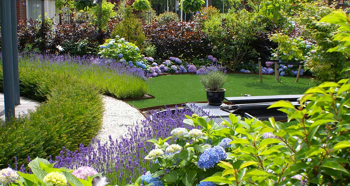 Planting wishaw landscapes for Garden design planting schemes