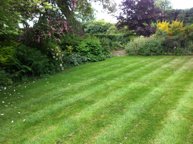 Lawn Mowing Sutton Coldfield Grass Cutting Sutton Coldfield